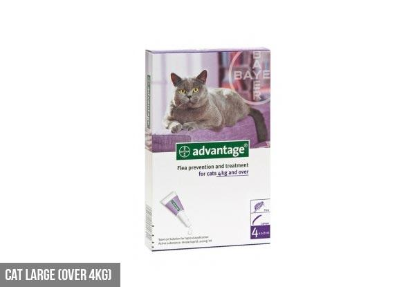 12 Tubes of Advantage Flea Treatment - Various Cat Treatment and Dog Treatment Options Available from Grab One