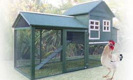 Chicken Coop from Groupy